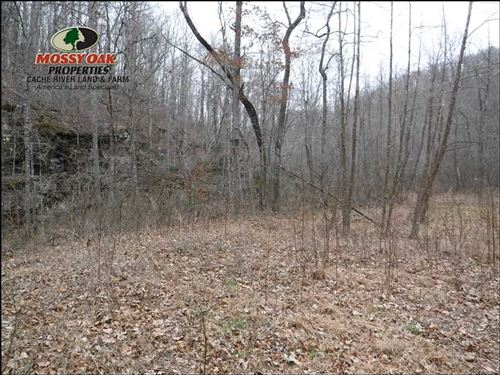 160 Acres of Recreational Timberla : Alread : Van Buren County : Arkansas
