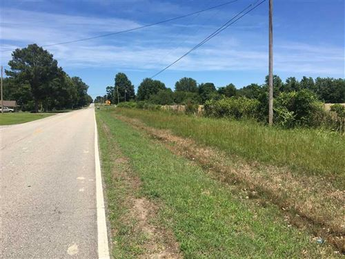 40 Beautiful Acres on East Side : Judsonia : White County : Arkansas