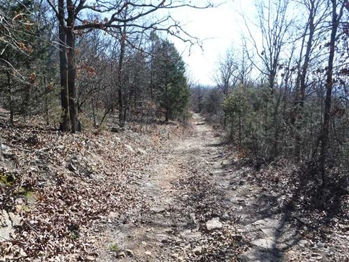 280 Acres of Recreational Timberla : Ozark : Franklin County : Arkansas