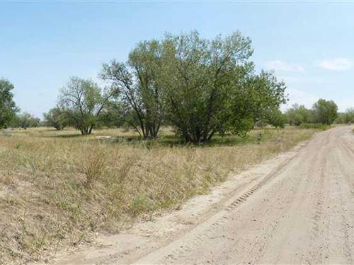 Hunter's Paradise on Bijou Creek : Wiggins : Morgan County : Colorado