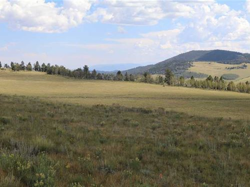 Bugler's Ridge : Guffey : Park County : Colorado