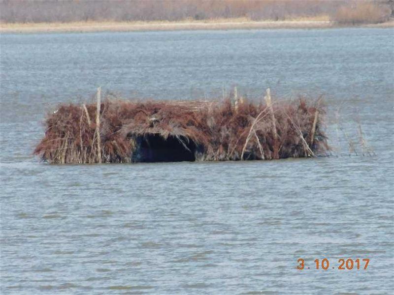 Duck Hunters - Golden Triang : Dalton : Chariton County : Missouri