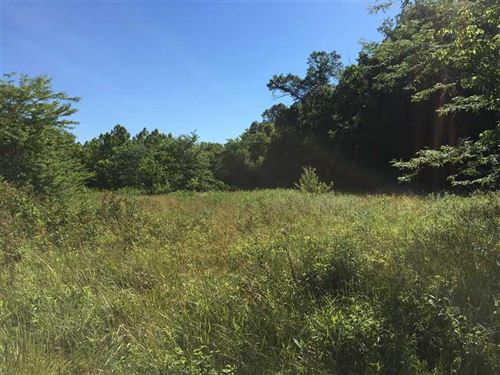 46 Acre Hunting Property In Mor : Versailles : Morgan County : Missouri