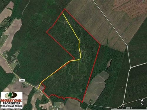 Reduced, 217 ac Timber And Huntin : Trenton : Jones County : North Carolina