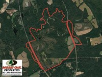 Reduction, 587 Acre Buffalo Creek : Clinton : Sampson County : North Carolina