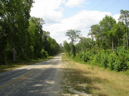 Rural Hunting Land Or Homesite : Soperton : Treutlen County : Georgia