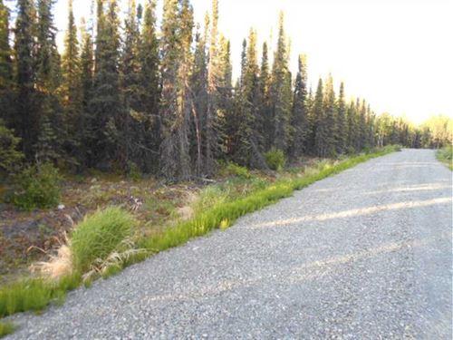 Near Soldotna, Alaska, a 19 Acre : Soldotna : Kenai Peninsula Borough : Alaska
