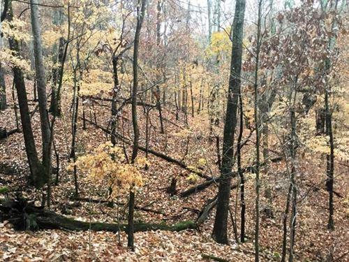 Big Ridge Farm : Fort Payne : De Kalb County : Alabama