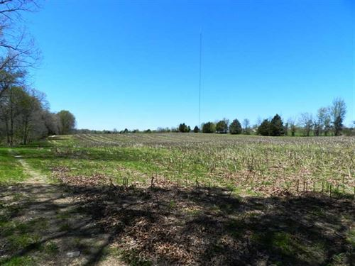 116 Acres of High Yielding Alabama : Minor Hill : Giles County : Tennessee