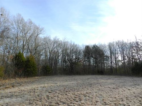 115 Acres, Excellent Pasture : Muscle Shoals : Colbert County : Alabama