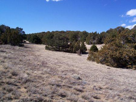 River Ridge Ranch Lot 134 : Walsenburg : Huerfano County : Colorado