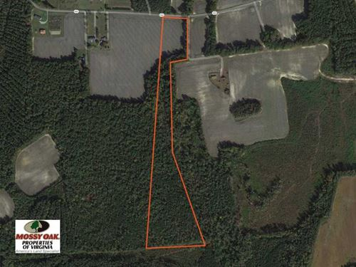Under Contract, 22 Acres of Hunti : Emporia : Greensville County : Virginia