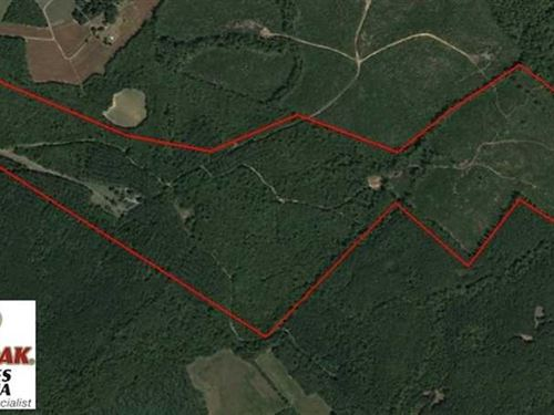 174 Acres of Hunting Land For Sale : Long Island : Pittsylvania County : Virginia