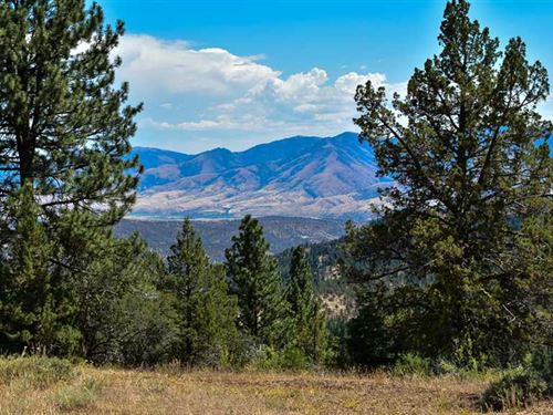 2356 Acre Timber/Recreation Ranch : Mount Vernon : Grant County : Oregon