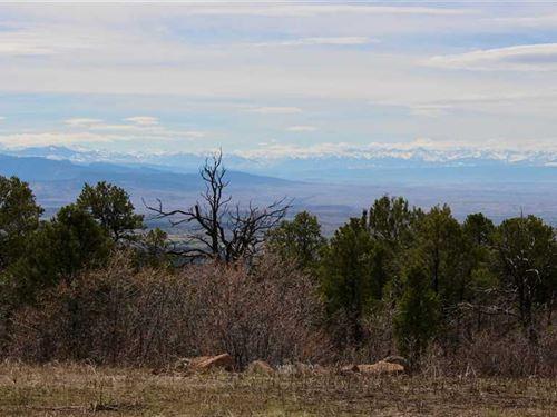 Mountain Lot in Western Colorado : Cedaredge : Delta County : Colorado