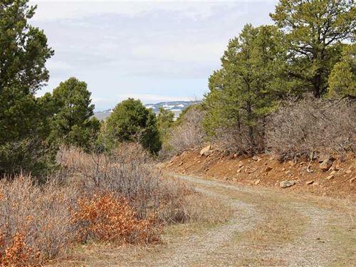 Secluded Lot in Western Colorado : Cedaredge : Delta County : Colorado