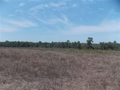 4368 Sw Cr 14 Jopl : Greenville : Madison County : Florida