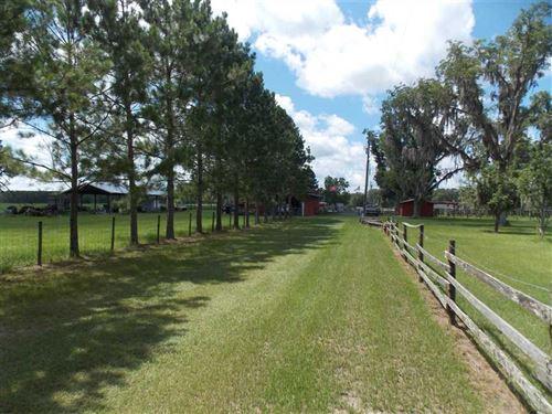 Turn Key Cattle Farm : Madison : Florida