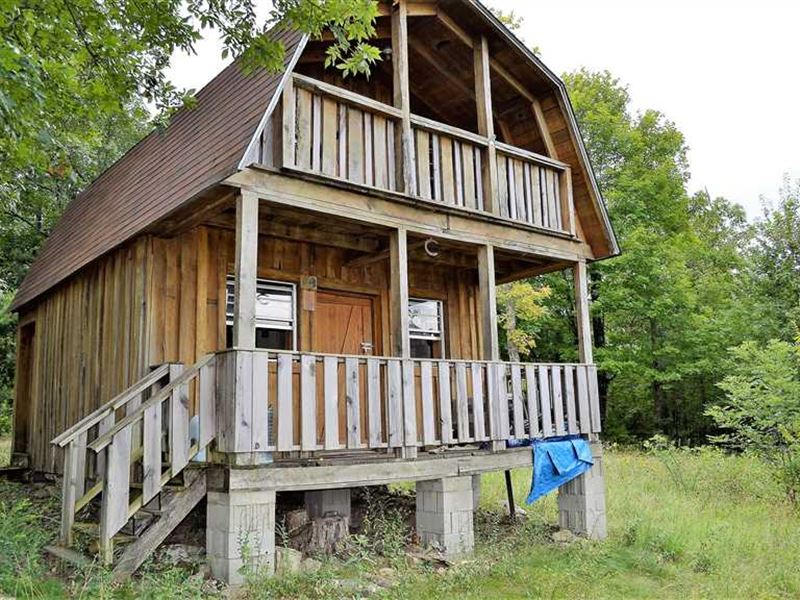 Cabin in The Woods With a View on : Witts Springs : Searcy County : Arkansas
