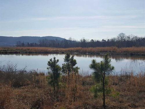 Price Reduced, 78 Acres of Mix : Clinton : Van Buren County : Arkansas