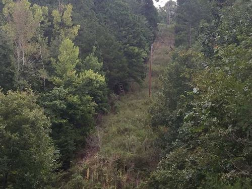 Price Reduced, 95 Acres of : Harriet : Searcy County : Arkansas