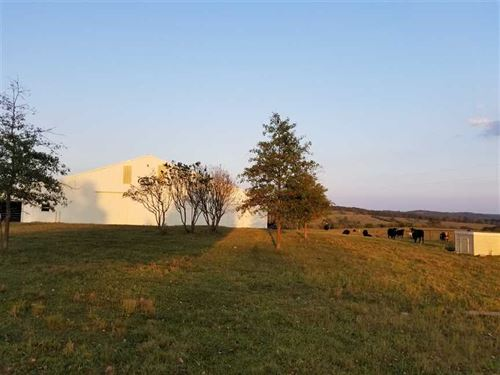15 Acre Horse Farm With Indoor Rid : Gainesville : Ozark County : Missouri