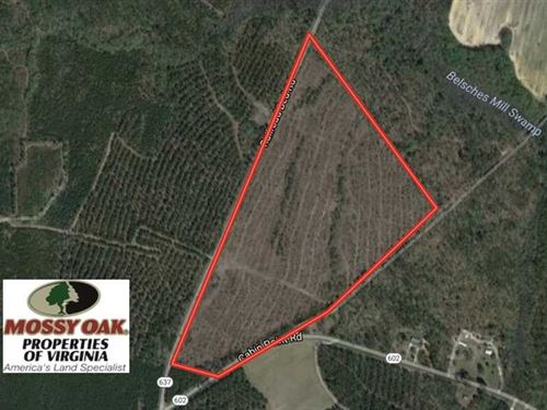 56.6 Acres of Residential Hunting : Disputanta : Sussex County : Virginia