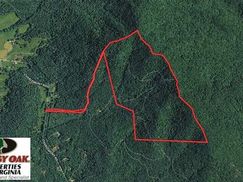 210 Acres of Hunting And Timber La : Goode : Bedford County : Virginia