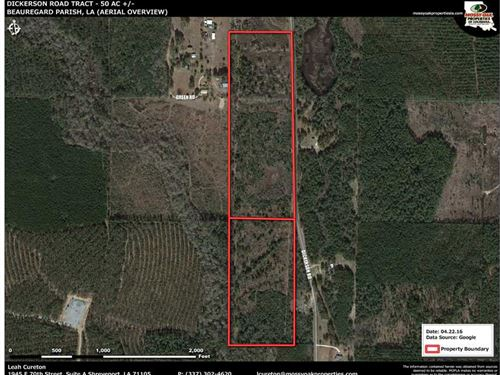 Dickerson Road Tract, Beauregard : Dequincy : Beauregard Parish : Louisiana