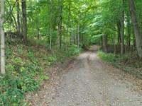 Shingle Mill Road, 64 Acres, Green : Bloomfield : Greene County : Indiana
