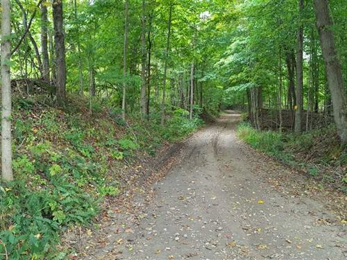 Shingle Mill Road, 64 Acres, Green : Bloomfield : Greene County : Indiana