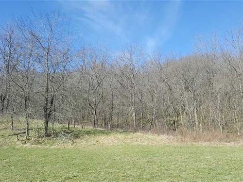 Laurel 135 Acres Timberland : Laurel : Franklin County : Indiana