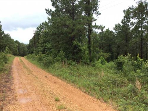 Flatwood Tract, Natchitoches Paris : Robeline : Natchitoches Parish : Louisiana