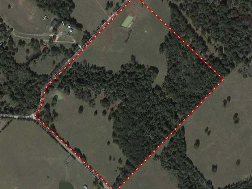 62 Beautiful Acres in Brazos Count : Bryan : Brazos County : Texas