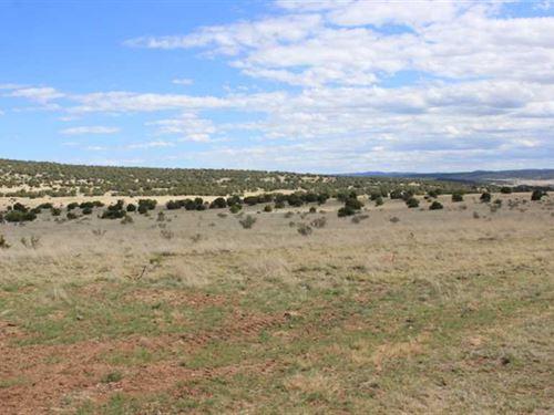 Tract 8A Ranchos DE Caballos : Capitan : Lincoln County : New Mexico