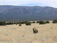 Las Tablas Ranch : Capitan : Lincoln County : New Mexico