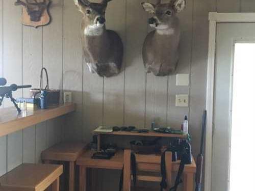 Hunter's Paradise - 80 Acres W/Bar : Lookeba : Caddo County : Oklahoma