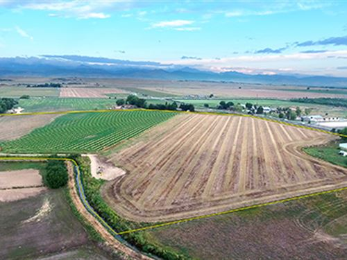 Land & Water Rights Auction : Longmont : Boulder County : Colorado