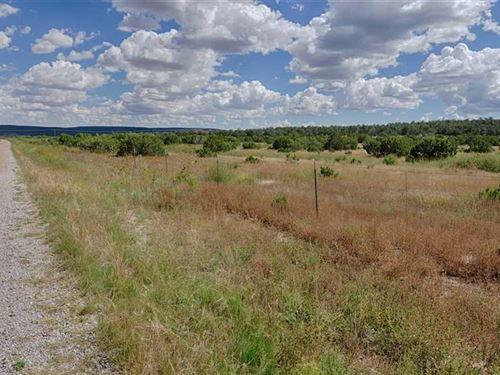 80 Acres Tijeras For Development : Tijeras : Bernalillo County : New Mexico