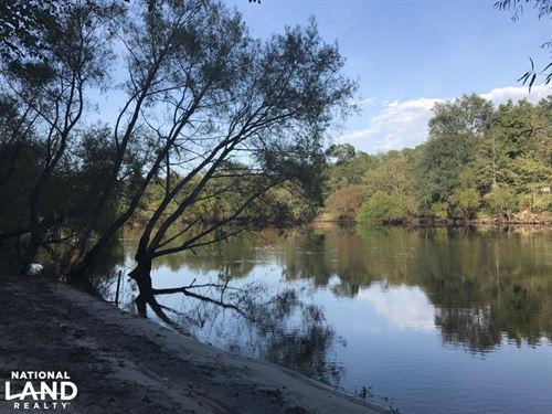 Edisto River Outdoorsman's Delight : Ridgeville : Colleton County : South Carolina