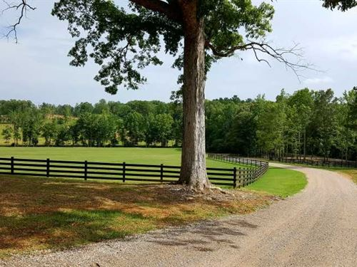 400 Acre Chalk Creek Cattle Farm : Savannah : Hardin County : Tennessee