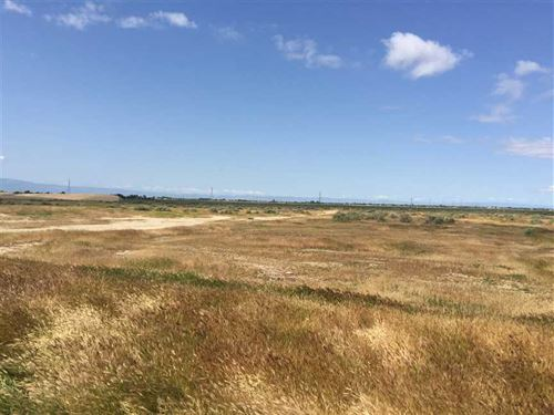 53 Acres on South Oswell Street : Bakersfield : Kern County : California