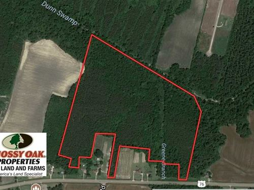 49.46 Acres of Hunting And Timber : Chadbourn : Columbus County : North Carolina