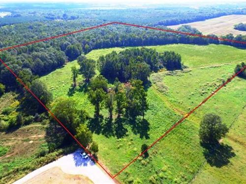 Excellent Pasture And Woodland Nea : Muscle Shoals : Colbert County : Alabama