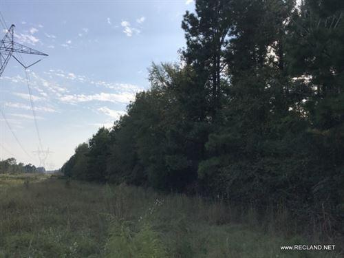 117 Ac - Timberland, Hunting, Home : Hampton : Calhoun County : Arkansas