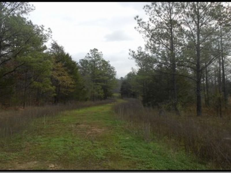50 Acres In Rankin County Ranch For Sale Pearl
