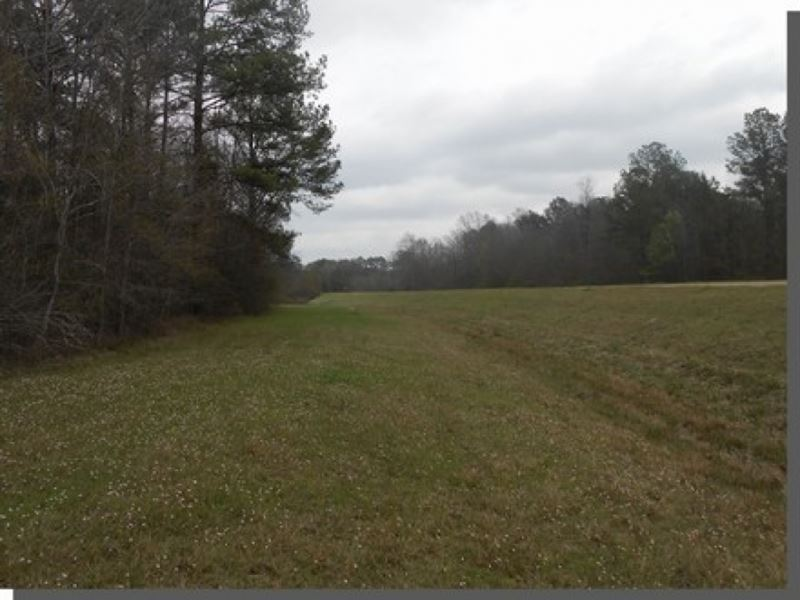 20 Acres In Rankin County Ranch For Sale Pearl
