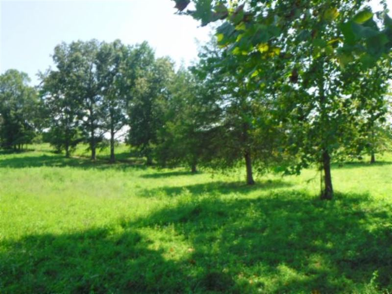 21Ac Joins Us Corps, Fenced Pasture : Monroe : Overton County : Tennessee