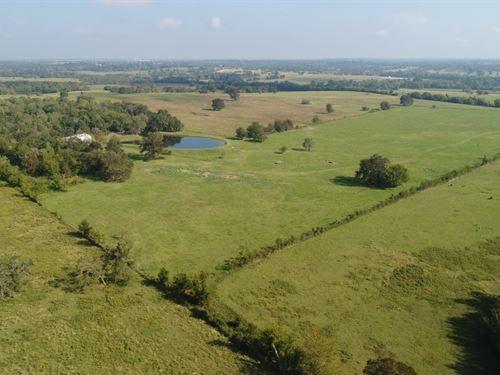 Walkoviak Farm : Anderson : Grimes County : Texas