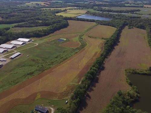 206 Acres Audrain Rd 756 : Martinsburg : Audrain County : Missouri
